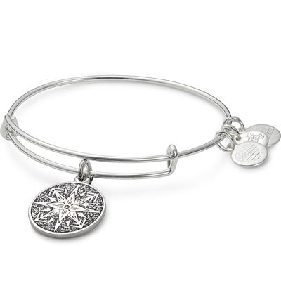 Buy Alex and Ani Healing Love Colour Infusion Bangle in Shiny Silver