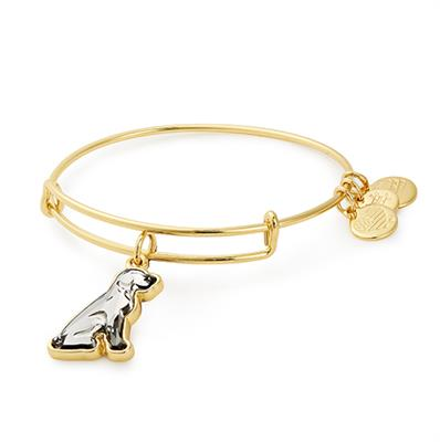 Buy Alex and Ani Shiny Gold Crystal Dog Bangle