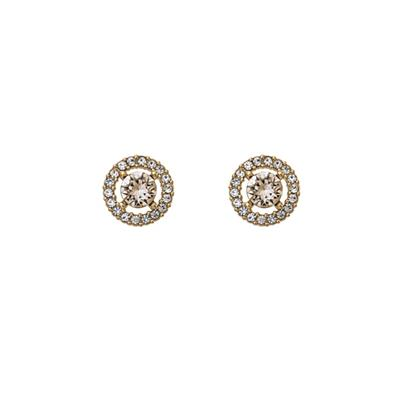 Buy Lily and Rose Miss Miranda Gold Silk Studs