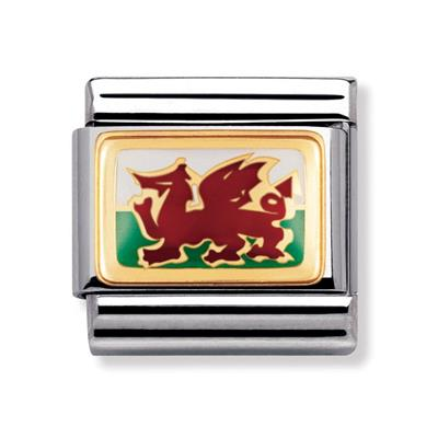 Buy Nomination Welsh flag