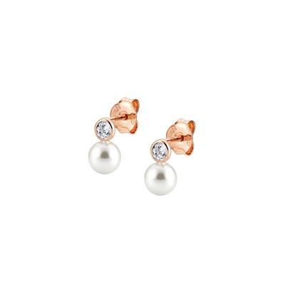 Buy Nomination Rose Gold Bella Pearl & CZ Earrings