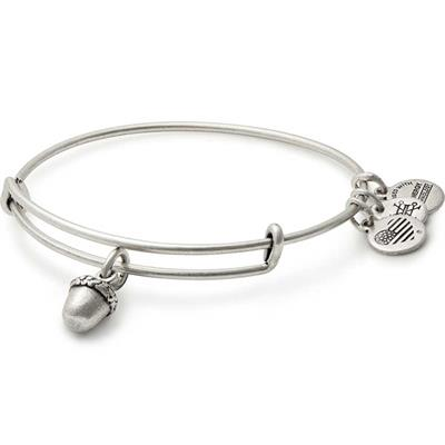 Buy Alex and Ani Unexpected Blessing Bangle Rafaelian Silver