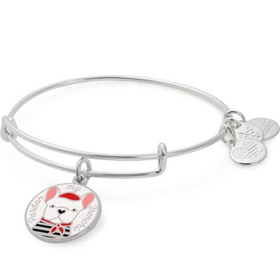 Buy Alex and Ani Pardon My Frenchie Colour Infusion Charm Bangle in Shiny Silver