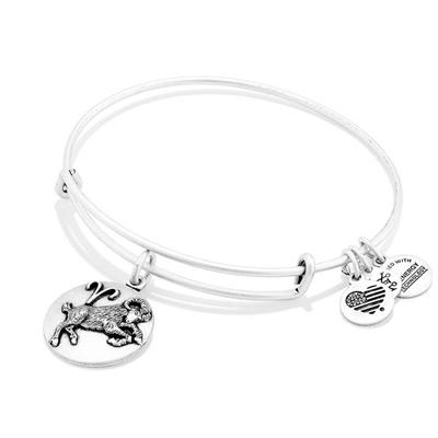 Buy Alex and Ani Aries Disc Bangle in Rafaelian Silver Finish