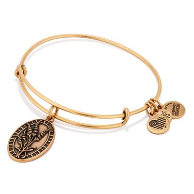Buy Alex and Ani Because I Love You Aunt in Rafaelian Gold Finish