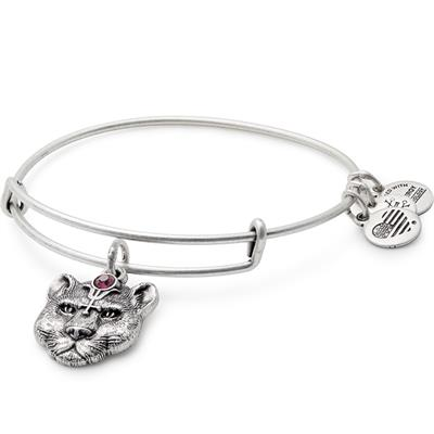 Buy Alex and Ani Wild Heart Disc in Rafaelian Silver Finish