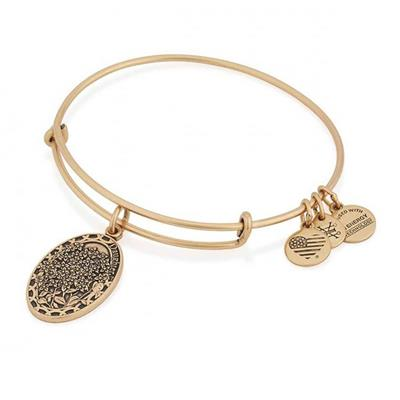 Buy Alex and Ani Because I Love You, Daughter in Rafaelian Gold Finish