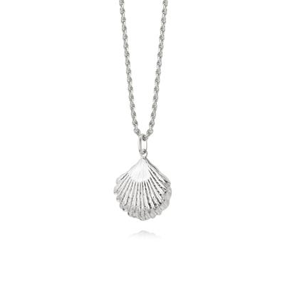 Buy Daisy Silver Large Shell Necklace
