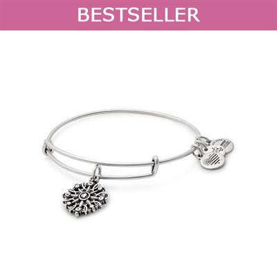 Buy Alex and Ani Compass II bangle in Rafaelian Silver