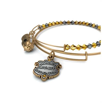 Buy Alex and Ani Harry Potter Hufflepuff Set of 2 Bangles