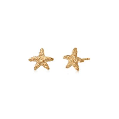 Buy Daisy Gold Starfish Studs