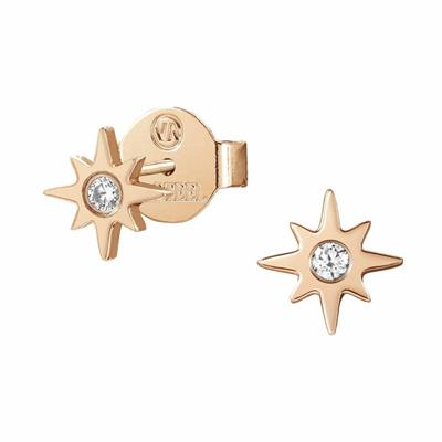 Buy Nomination Rose Gold Stardust North Star Earrings