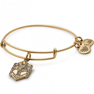 Buy Alex and Ani Tree of Life Disc bangle in Rafaelian Gold Finish