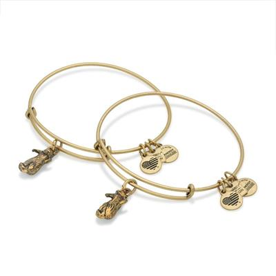 Buy Alex and Ani Side by Side Otter Set of 2 in Rafaelian Gold