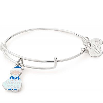 Buy Alex and Ani Elf Colour Infusion Bangle in Shiny Silver