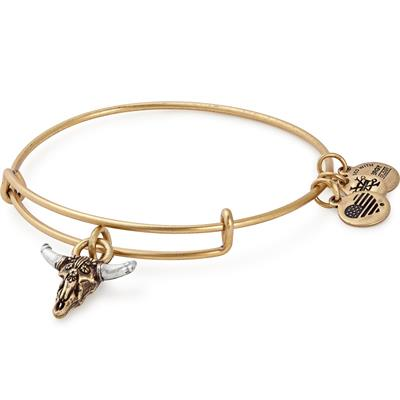 Buy Alex and Ani Spirited Skull Bangle in Rafaelian Gold