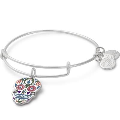 Buy Alex and Ani Colour Infusion Calavera Bangle in Shiny Silver