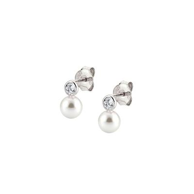 Buy Nomination Bella Pearl & CZ Earrings
