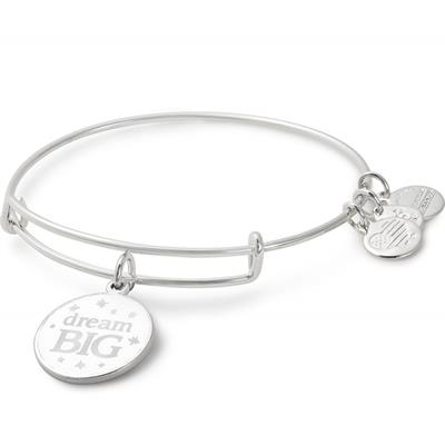 Buy Alex and Ani Dream Big Colour Infusion Bangle in Shiny Silver