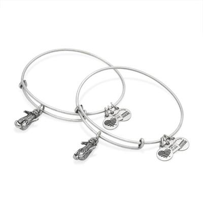 Buy Alex and Ani Side by Side Otter Set of 2 in Rafaelian Silver