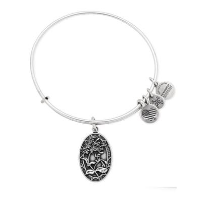 Buy Alex and Ani Because I Love You, Sister in Rafaelian Silver Finish