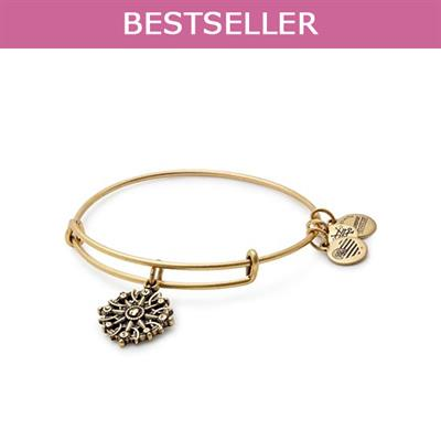 Buy Alex and Ani Compass II bangle in Rafaelian Gold