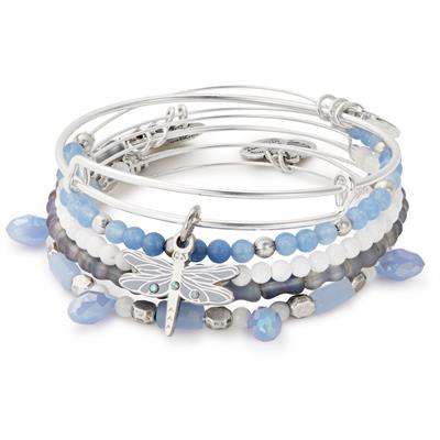 Buy Alex and Ani Dragonfly bangle Set of 5