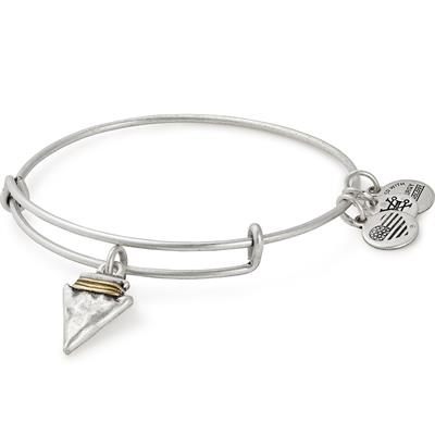 Buy Alex and Ani Arrowhead Charm Bangle in Rafaelian Silver
