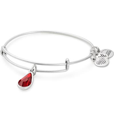 Buy Alex and Ani January Garnet Birthstone bangle in Rafaelian Silver Finish