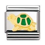 Buy Nomination Turtle, Green