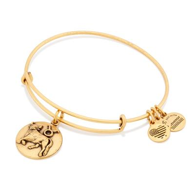 Buy Alex and Ani Taurus Disc Bangle in Rafaelian Gold Finish