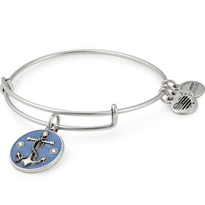 Buy Alex and Ani Anchor Colour Infusion Bangle in Rafaelian Silver