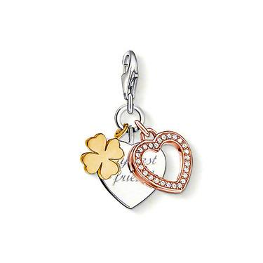 Buy Thomas Sabo My Best Friend Cluster Charm
