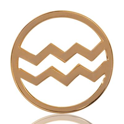 Buy Nikki Lissoni Aquarius Gold Medium Coin