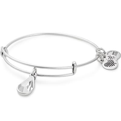 Buy Alex and Ani April Crystal Birthstone bangle in Rafaelian Silver Finish