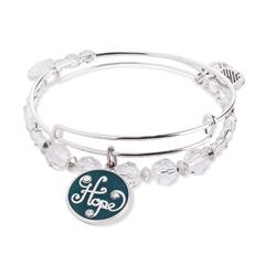 Hope Set of 2 bangles in Shiny Silver