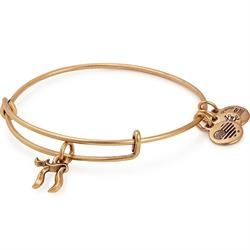 Chai Bangle in Rafaelian Gold