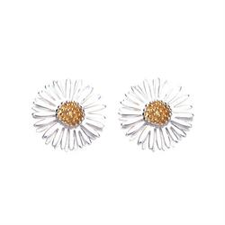 Daisy 12mm Michaelmas Studs