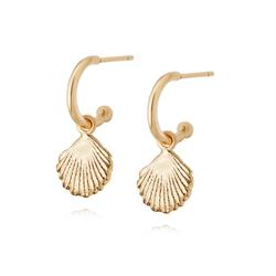 Gold Shell Drop Earrings by Daisy