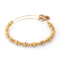 Canyon Shiny Gold Bangle