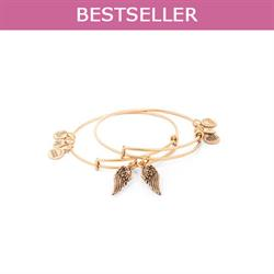 Set of 2 Wings Rafaelian Gold bangles