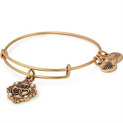 Buy Alex and Ani Because I Love You Aunt III Bangle in Rafaelian Gold