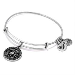 Alex and Ani True Direction Bangle in Rafaelian Silver