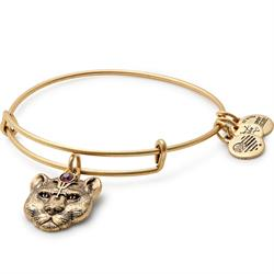 Wild Heart Disc bangle in Rafaelian Gold Finish