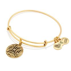 Pisces Disc Bangle in Rafaelian Gold Finish
