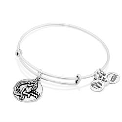 Alex and Ani Aquarius Disc Bangle in Rafaelian Silver Finish