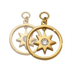 Gold Wish Upon A Star Earring Coins