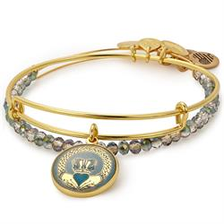 Alex and Ani Claddagh Art Infusion Set in Shiny Gold
