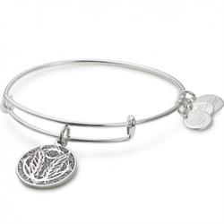 Alex and Ani Godspeed Colour Infusion Bangle in Shiny Silver