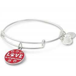 Love Is All You Need Colour Infusion Bangle in Shiny Silver
